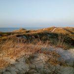 Aus Sand