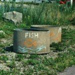 Fischgrill am Hafen