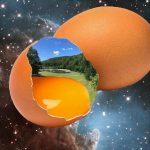 Das Ei zuerst